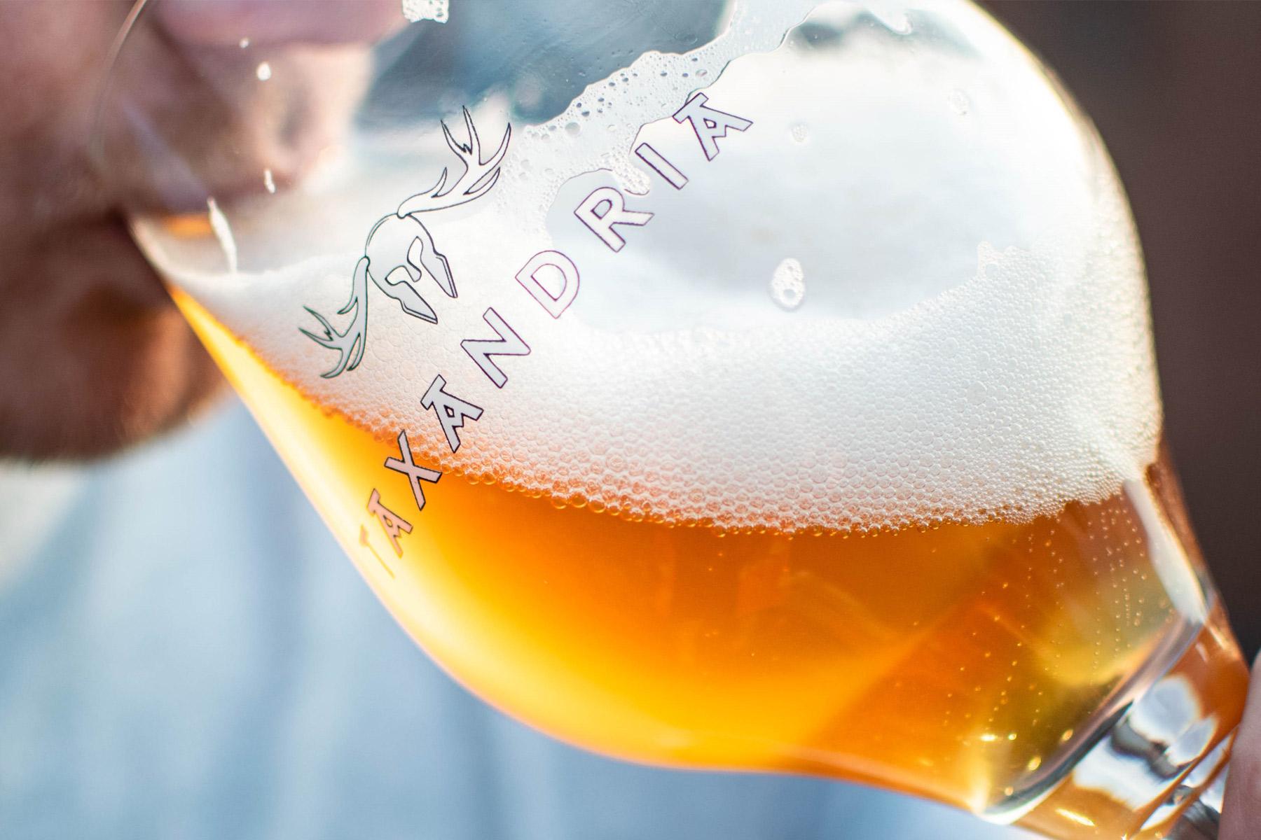 taxandria-bier-glas-1800×1200